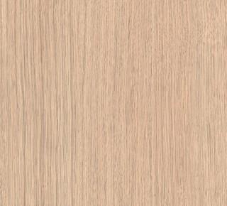 Australian Pine