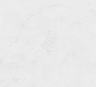 F2251 - Moonscape