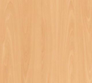 M3247 - Faia Woodland