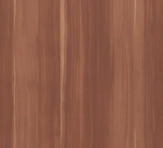 M4894 - Ameixeira