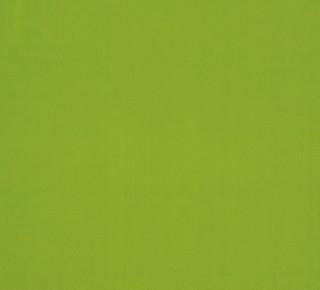 023 - Verde Ecológico
